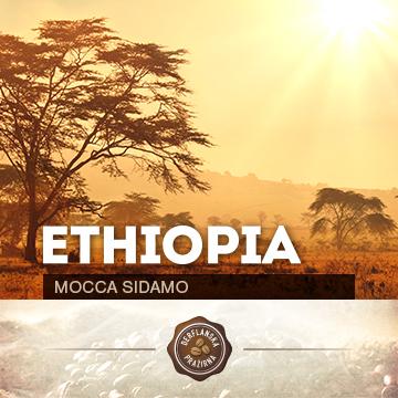 Ethiopia Mocca Sidamo