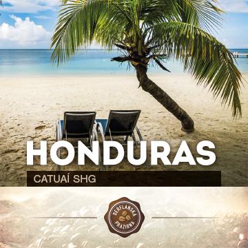 Honduras Catuaí